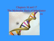 MolecularGenetics1
