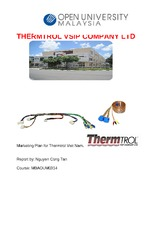 Marketing Plan for Automotive Wire Harness - N.C. Tan