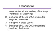Physiology slides_ECE201_Part 3