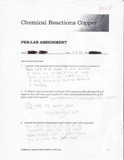 Lab Chemical Reactions Copper