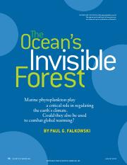 SA_Ocean Invisible Forest.pdf