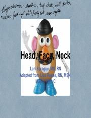 Head, Face, Neck_without as many pics
