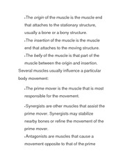 origin of muscles notes