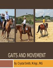 Gaits and Movement Lecture.pptx