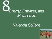 Ch08 Lecture-Energy, Enzymes, and Metabolism.Tardif(1)