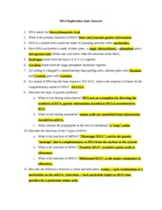Printables Dna Replication Worksheet Answers dna replication quiz answers 1 stands for