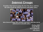 Gov Seminar - Interest Groups