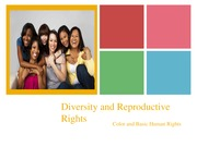 Reproductive Rights Presentation