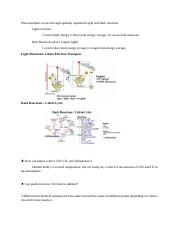 Botany Notes Lecture 9