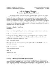 ib200_lab06_support_measures