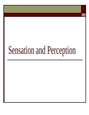 POSTSensation and perception