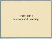 Lecture 7 - Memory and Learning