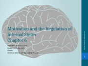 Brain and Behavior Chapter 6