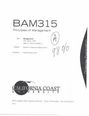 BAM 315 Principles of Management Challenge Exam