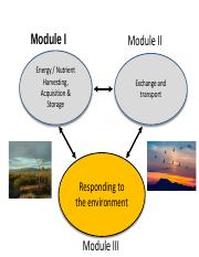 Responding to the environment introduction.pdf