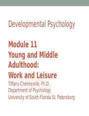 M 11 Young Adult.Work and Leisure.ppt