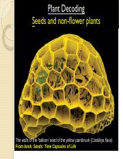 PD 5-seeds and non-flowering plants-Blanked.pdf