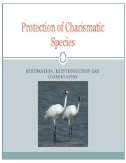 40 charismatic species Paul Senner.pdf