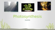 Photosynthesis Lecture 2015  GenBio suspended