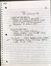 Biological Psychology Notes 2
