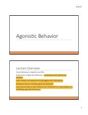 Agonistic Behavior_sv