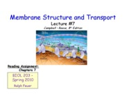 Lecture _7 - Membrane Structure and Transport