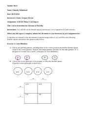 SCIE207_Lab3_worksheet_REV
