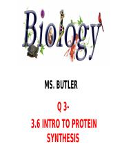 3.6 intro to protein synthesis .pptx