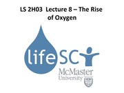 LS 2H03 - Lecture 8 - The Rise of Oxygen - A2L