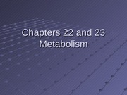 Chapters 22 and 23 Metabolism