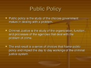 470 policy process slides