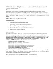 IST352 - Assignment 1 What is a Systems Analyst