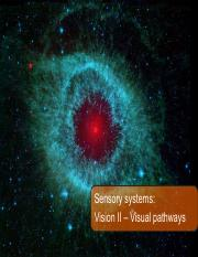 Lecture 5 - Visual pathways.pdf