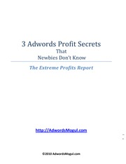 3-Adwords-Profit-Secrets-that-Newbies-Don-t-Know