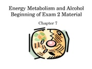 Lecture 8 - Beginning of Exam 2 Notes on Slides