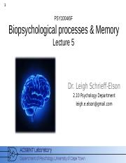 Biopsychology_2015_Lecture_5
