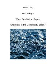 CHEM COMM LAB REPORT.docx