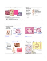 Lecture_4_Z331_Histology