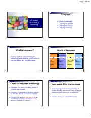 P11B+Slides+11--Language+structure+++meaning+for+website.pdf