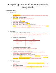 RNA_Protein Synthesis Study Guide_answer key.pdf
