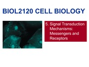 BIOL2120 5 Signal Transduction(1)