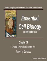 Lecture 19 - Chapter 19 Sexual Reproduction and the Power of Genetics.pptx