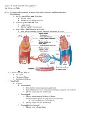 ANP1105C_Topic 4.3_Blood Vessels.docx