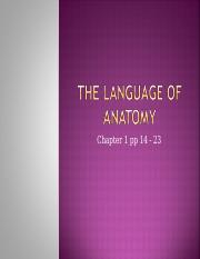 Anatomy Lecture #1A Language of Anatomy (4)