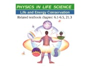 09_A Life and energy conservation