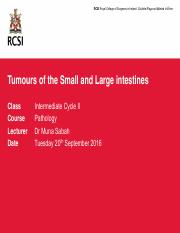 2016 Tumours of the small and large bowel