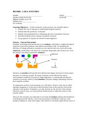 lab 4 Enzyme.doc