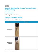 Bacteria Identification through Functional Media _ Mot. - TMP (1).docx