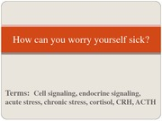 Worry_Yourself_Sick_Sept_12_2011
