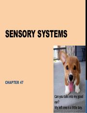 Lecture 21 - Sensory Systems (1).pdf